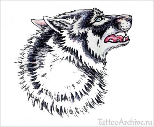 эскизы волков: